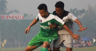 TOP-PSMS