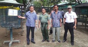 Kasubdit IV Tipiter Ditreskrimsus Poldasu, AKBP Robinson Simatupang didampingi pihak BKSDA menunjukkan satu dari puluhan kandang burung yang ditemukan di lokasi.(WOL Photo)