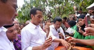 Jokowi kunjungi Mamuju. ©Setpres RI/Cahyo