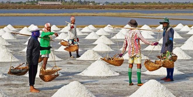 Hasil gambar untuk ilustrasi mafia garam
