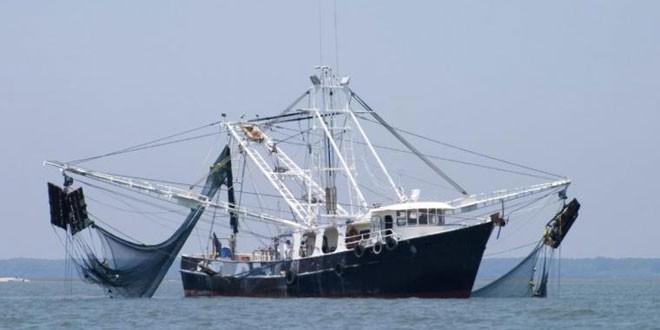 Pukat trawl (Istimewa)