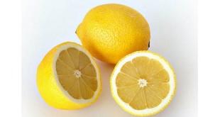Kandungan nutrisi dalam Lemon ampuh cegah kanker payudara (Foto: Hungrygowhere)