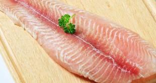 Makan ikan salmon membuat Anda awet muda (Foto: Boldsky)