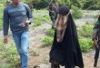 Istri Santoso yang ditangkap (Foto: MNC Media)