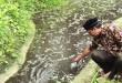 Sekjen IPSM Aceh Utara, Mukhtaruddin S.Pd menunjukkan air berwarna hitam pekat yang dicemari limbah. (WOL Photo/Chairul Sya'ban)