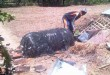 Benda hitam misterius yang jatuh di kandang sapi (Foto: Syaiful Islam/Okezone)