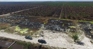 Foto dari drone tim KLHK yang selamat dari tangan penyandera. (Dok. Kementerian Lingkungan Hidup dan Kehutanan)