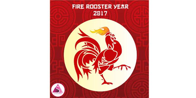 Ayam-Api