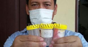 Penyidik Pembantu Reskrim Polsek Medan Sunggal, Aipda Alam Surya SH, memperlihatkan sempel yang dikemas dalam botol plastik untuk dikirim ke Labfor Polri Cabang Medan.(WOL. Photo/gacok)