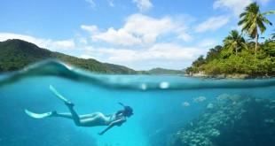Ilustrasi Berenang di Laut (Foto: Shutterstock)