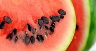 Biji semangka tingkatkan kesuburan pria (Foto: Gardeningknowhow)