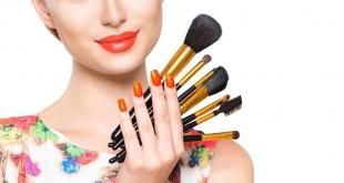 Pilihan brush make up (Foto: Thetipz)