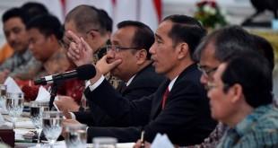 Presiden Joko Widodo di Istana (Antara)