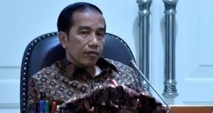 Presiden Joko Widodo. (Foto Antara/Puspa Perwitasari)