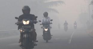 Asap pekat menyelimuti jalanan di Aceh Barat (Antara)