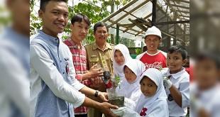 Ketua Karang Taruna Dusun Sukomulyo Lampung Selatan, Ogi Saputra menerima bantuan donasi pohon cabai dari dari SDN 3 Sukanegara sekolah binaan Coca-Cola Amatil Indonesia dalam program Coca-Cola Forest , Disaksikan Pengurus Forum Pendidik Sukanegara dan Farmer Leader CCAI , Selasa, (1/8). (Ist)