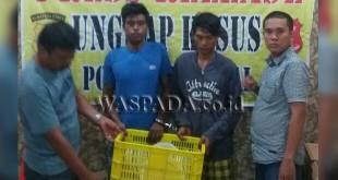 Dua Penyidik Pembantu Reskrim Polsek Medan Sunggal memperlihatkan keranjang plastik warna kuning berisikan 45 keping piring batu disaksikan dua tersangka.(WOL. Photo/Gacok)