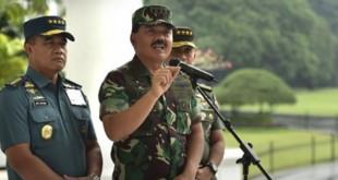 Panglima TNI Marsekal Hadi Tjahjanto (Foto: Ant)