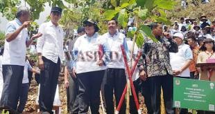 Gubsu HT Erry Nuradi ikut menanam pohon bersama Presiden Jokowi pada acara HMPI dan BMN 2017 di Gunung Kidul, Yogyakarta, Sabtu (9/12). (WOL Photo)