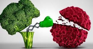 Sayuran Brokoli (Foto: Hindustantimes)