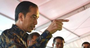 Jokowi saat di Maluku (Foto: Setkab)