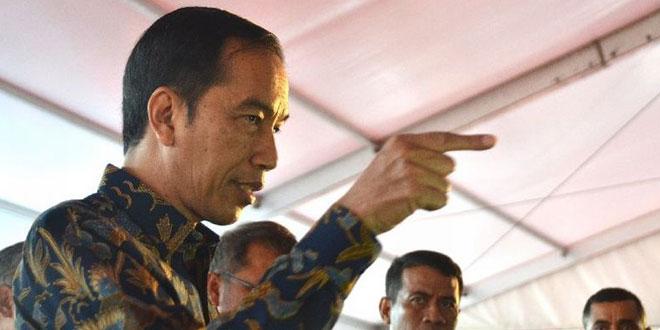 Jokowi (Foto: Setkab)
