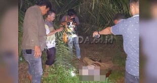 Petugas Inafis Polrestabes Medan melakukan pemeriksaan luar mayat Adi Saputra alias Ponidi di lokasi kejadian. (WOL Photo/Gacok)