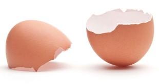 Cangkang telur (Foto: Cuisine & Health)