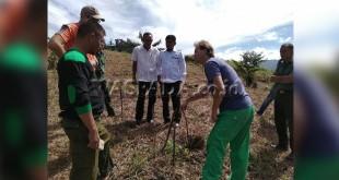 Mr. Bastian warga negara Bolivia didampingi Ketua KPH Wilayah V, Zulhamuddin Arbie SHut  dan sejumlah Polhut, saat mempraktekkan langsung sistem penanaman agroforestri terhadap beberapa komoditi unggulan di Gayo Lues, Minggu (1/4). (WOL Photo/Bustanuddin)